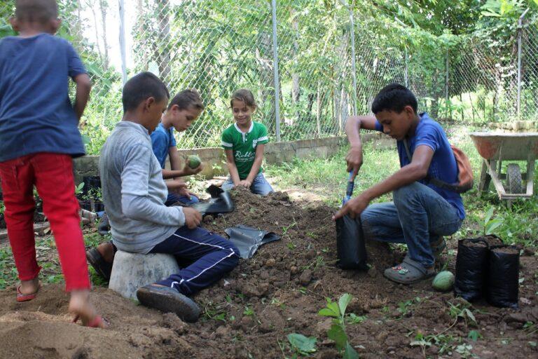 L'agroécologie scolaire: entretenir le potager et remplir les sacs de culture